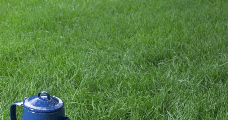Como decorar um toco de árvore. Tocos de árvores podem ser feios e muitas vezes difíceis de remover. Para evitar que seus tocos de árvore se tornem uma parte indesejada de seu quintal, tente decorá-los para combinar com os temas existentes em seu projeto paisagístico. Os itens que você pode usar para transformar um toco variam de acordo com sua imaginação. Desde recipiente para ...