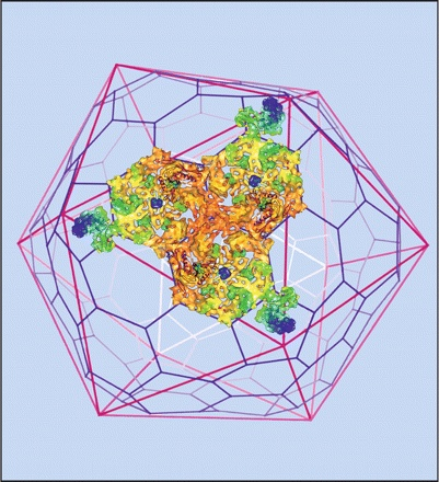 """""""Cover photograph (Copyright © 2012, American Society for Microbiology. All Rights Reserved.): Structure of the SPP1 bacteriophage revealed by cryo-electron microscopy.""""  JVI"""