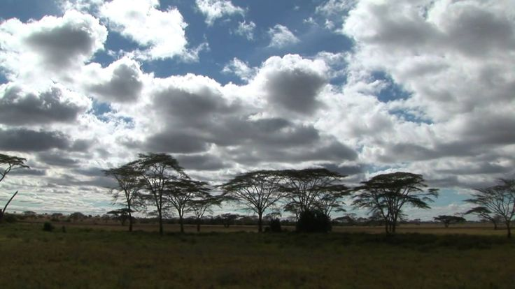 Serengeti National Park - Tanzania - Travel & Discover