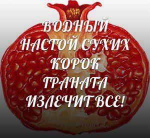 (1262) Gallery.ru / Водный настой сухих корок граната излечит все - Лечение - lapyshok