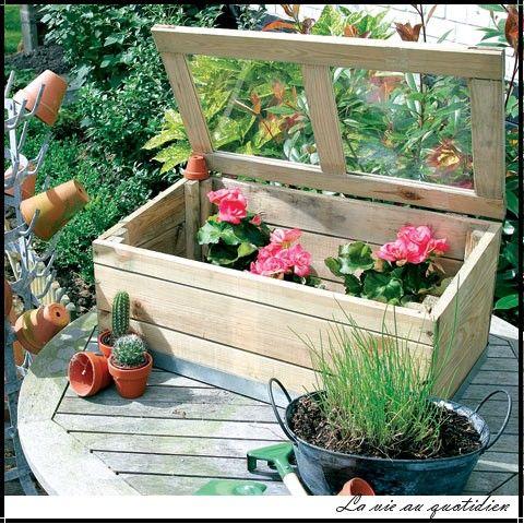 Serre en bois pour semis mini serre pour balcon pas cher for Decoration jardin balcon