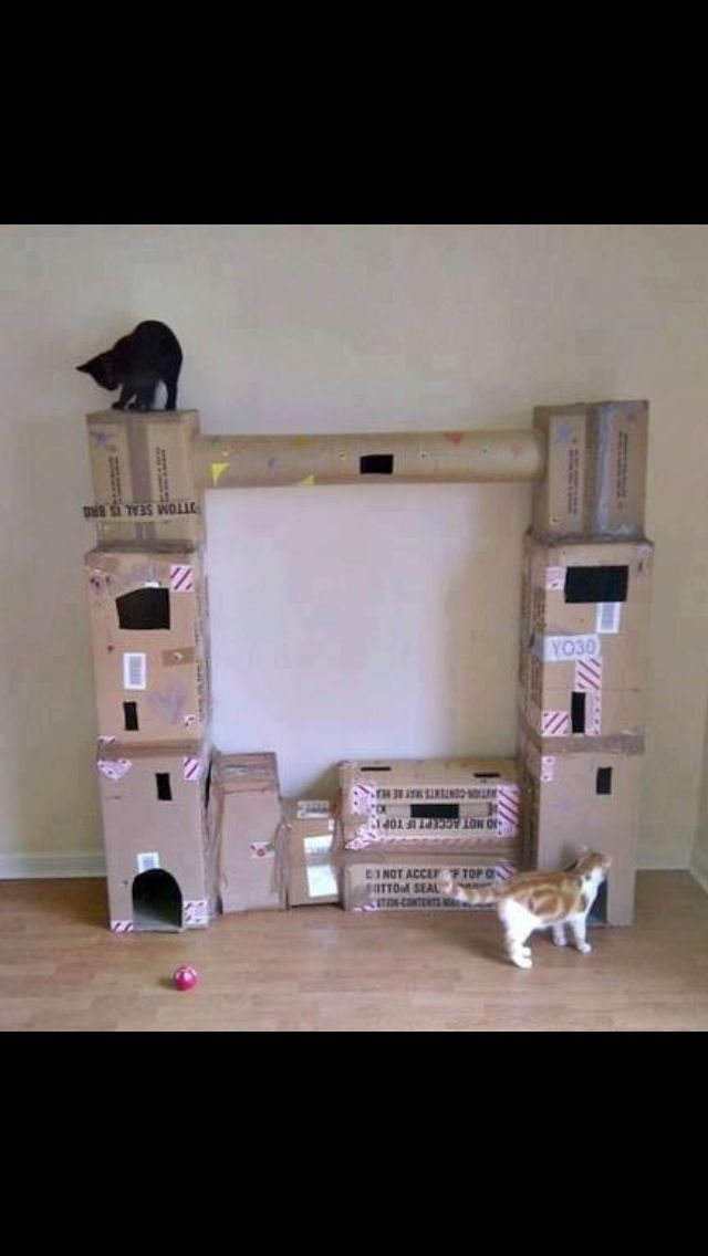 Diy Cardboard Cat Tree Tower Cats Pinterest Cats Cat Tree And