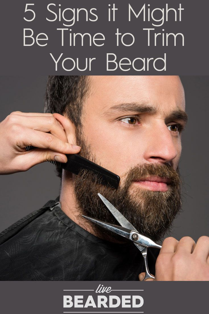 5 Signs it Might Be Time to Trim Your Beard | Beard Care Tips | Bearded Men |