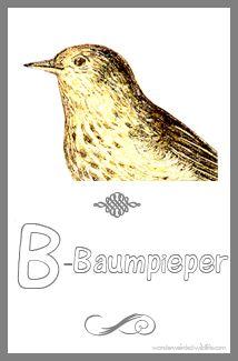 54 best images about 3 birds on pinterest bird crafts - Vorlage vogel ...