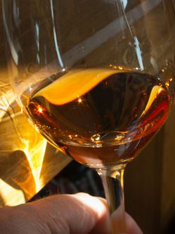 Some of the world's greatest sweet wines are produced by Winelaubenhof Kracher in Austria's Burgenland region. The nearby Neusiedlsee, a shallow reed-filled lake, produces Botyrytis, the noble rot that is required to take the local grapes and turn them to liquid gold.