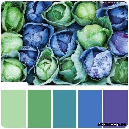 110 интересных цветовых решений