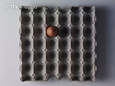 달걀판위에 달걀 - gettyimageskorea