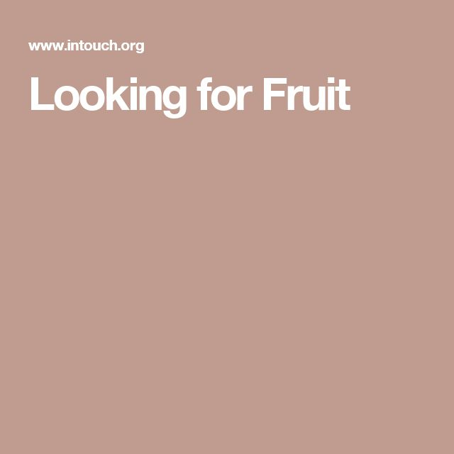 Looking for Fruit