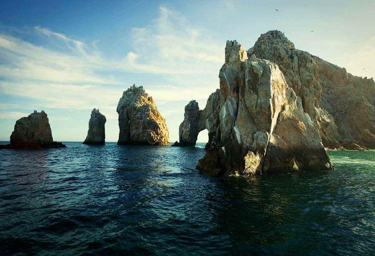Boar's Head Bold : Baja