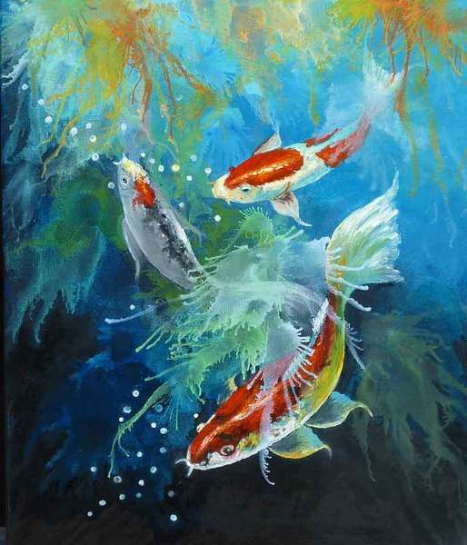 17 best images about gary jenkins on pinterest for Koi for sale florida