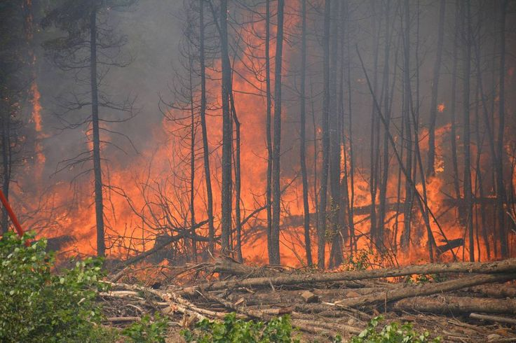 Saskatchewan Fires: Pilot Takes Heart-Stopping Photos Of Inferno