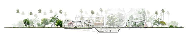 Galería de Primer Lugar en concurso público para el diseño del nuevo Tropicario del Jardín Botánico / Bogotá, Colombia - 17