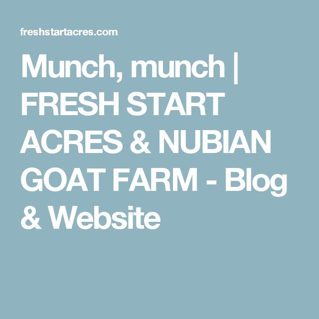 Munch, munch   FRESH START ACRES & NUBIAN GOAT FARM - Blog & Website