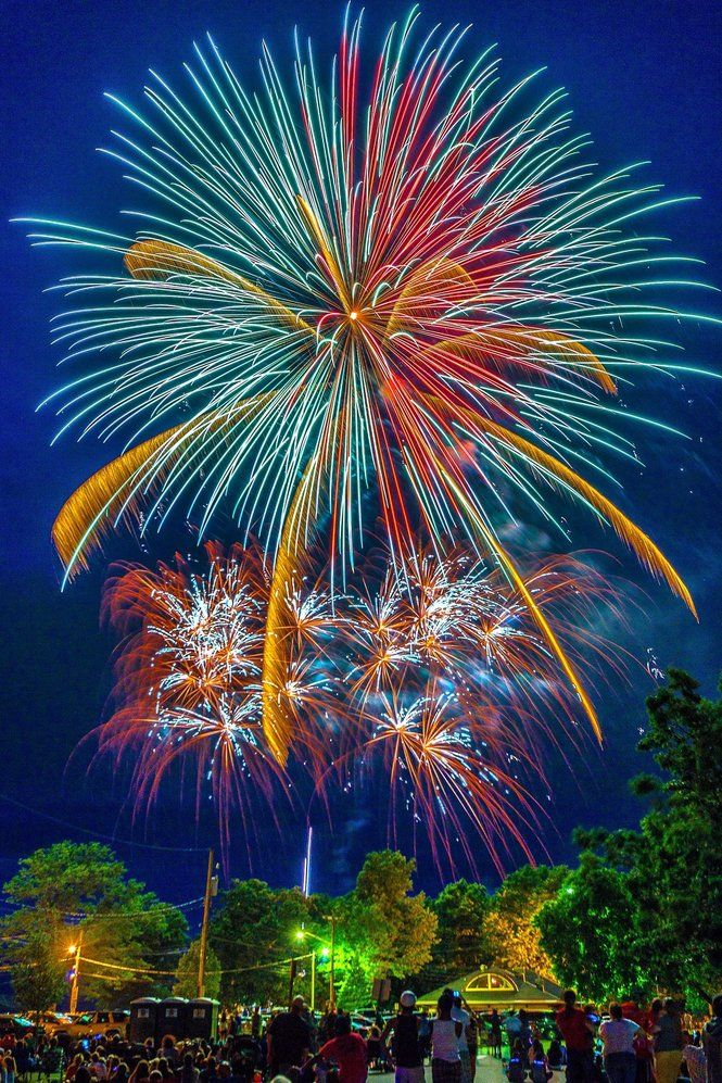 July 4th Fireworks . . . (Repinner's comment: Looks like Spider Mums to me.)