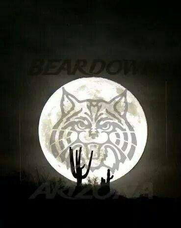 Arizona Wildcats, Bear Down!! By Benjamin Johnson