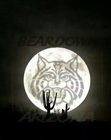 Arizona Wildcats, Bear Down!!