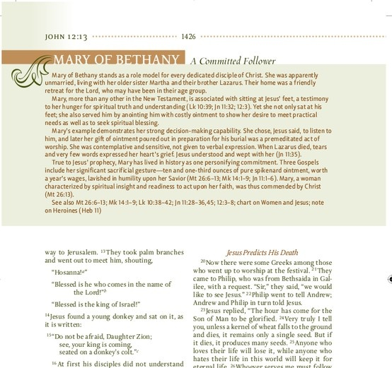 14 best bible study images on pinterest bible studies bible discover the women of the bible in a deeper richer context inside the niv womens fandeluxe Choice Image