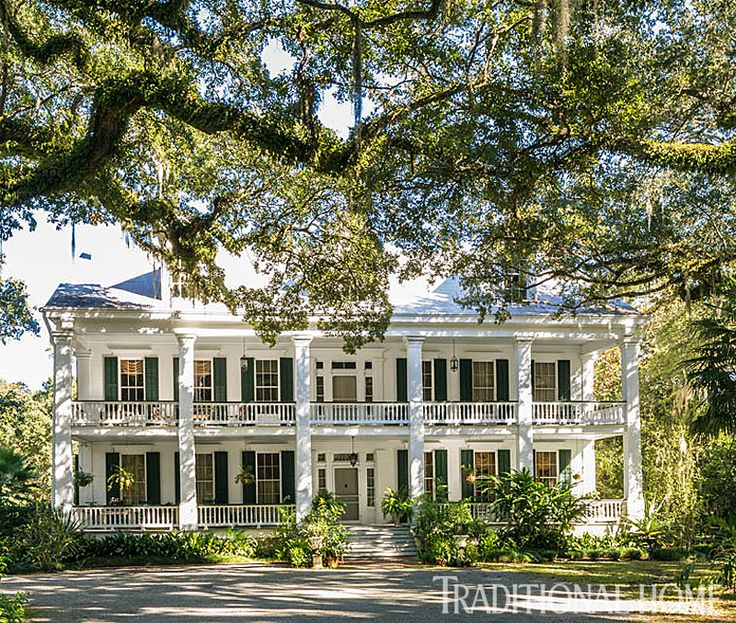 This is Albania,  artist Hunt Slonem's circa-1850 plantation house situated deep in the Louisiana bayou. - Photo: Marco Ricca and Colleen Duffley