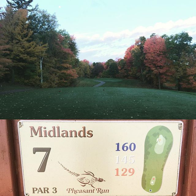 #fall #golf #fallcolours 🍂🍁Midlands #7 I could stay here all day! ⛳️️