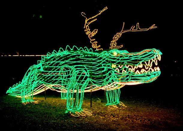 Alligator Christmas lights. To find more animal themed Christmas decorations, BREC's Baton Rouge Zoo has Zoo Lights until December 31, 2014!