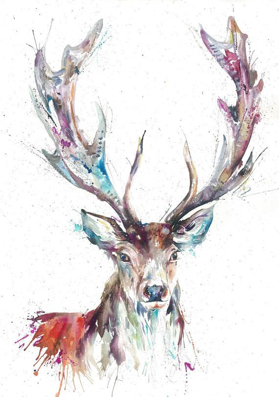 Collectable Large A2 GICLEE FINE ART Highland Stag stags