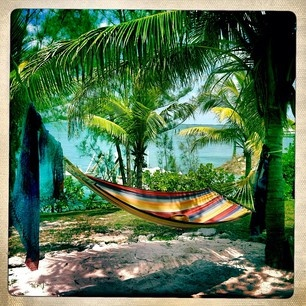An absolute essential - a hammock between palm trees with an ocean view