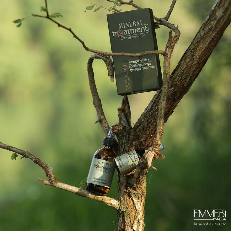 Linea Mineral Treatment di Emmebi Italia  Programma Wood