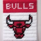 Plastic Canvas Pattern Cubs | Chicago Bulls tissue box cover in plastic canvas PATTERN ONLY