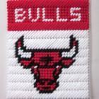 Plastic Canvas Pattern Cubs | Chicago Bulls tissue box cover in plastic canvas PATTERN ONLY
