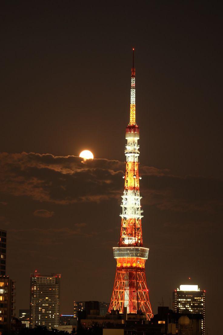 The 25 best tokyo tower ideas on pinterest tokyo city for Koi garden sas