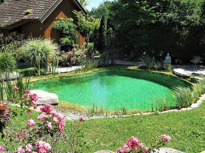 Schwimmteich Gartenpools Gartenteich Naturschwimmbecken