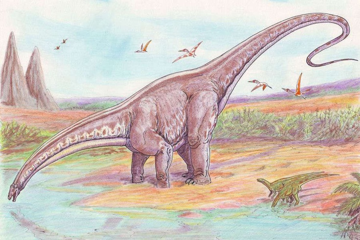 Apatosaurus walked on land,  Laid her eggs in nests of sand,  Ate the plants and leaves from trees,  A school bus came up to her knees.  Apatosaurus great and grand,  Was the giant of the land.