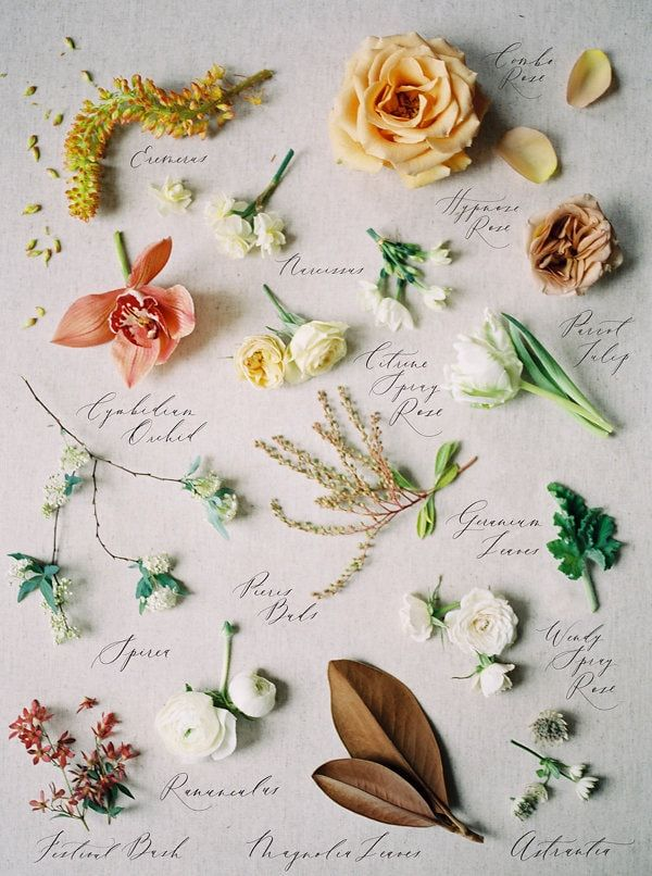 anatomy of a bridal bouquet | image via: once wed