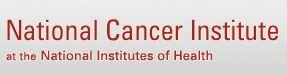 Testicular Cancer - National Cancer Institute