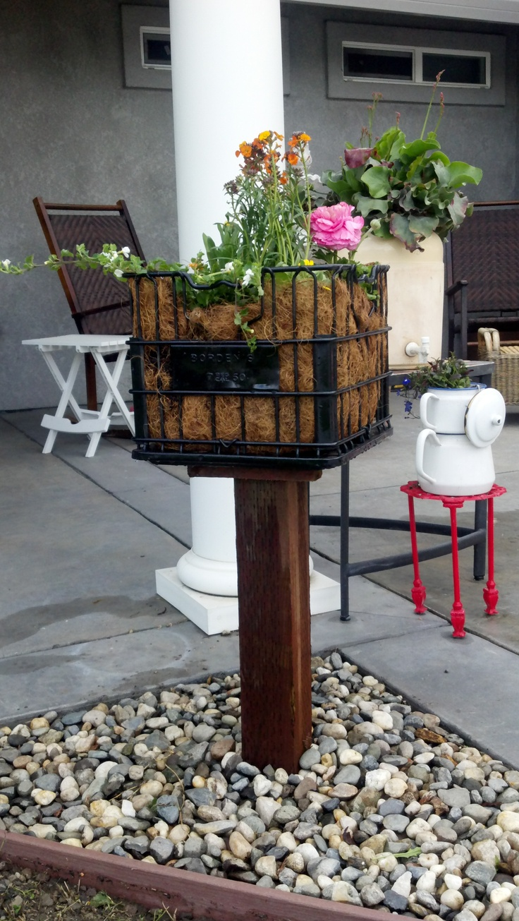 vinatge milk crate transformed into a plant stand