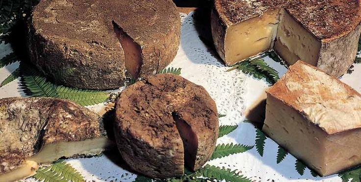 Come servire i formaggi in un ristorante. Ecco una scheda di presentazione dei vari tipi di formaggi e dei vari tipi di presentazione degli stessi