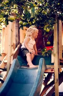Julia Treehouse Slide