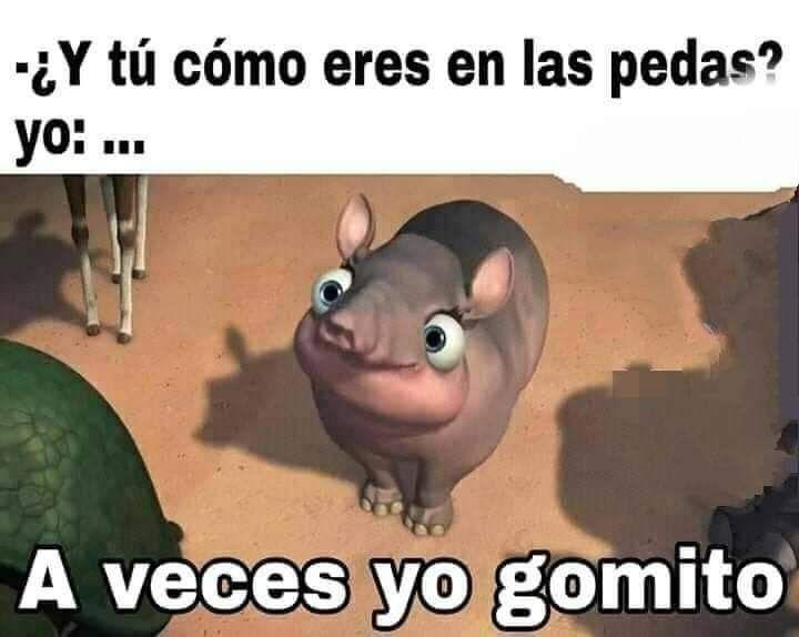 Yo Memes Estupidos Memes Divertidos Memes En Espanol