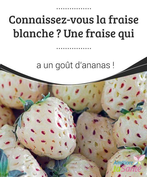 """Connaissez-vous la fraise #blanche ? Une fraise qui a un goût #d'ananas !   Les """"pineberries"""", aussi connues sous le nom de """"fraises blanches"""" sont des #fruits #exotiques très curieux"""
