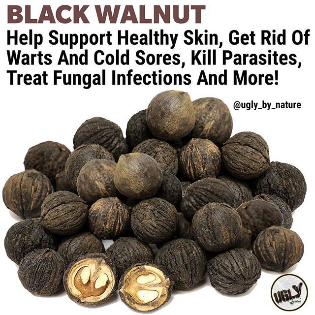 It might seem a little strange to be rubbing the dried powder of a nut on your skin but thats exactly what studies suggest you should do. Most of the skin-promoting benefits of the black walnut derive from its nutrient-rich hull (also known as husk) the outer covering of the nut. By grinding up this hull you can create a fine powder. This can then be made into a skin-nurturing paste.  This paste contains high levels of antioxidants minerals and beneficial fatty acids which can positively…