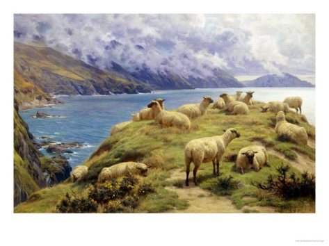 Sheep Reposing, Dalby Bay, Isle of Man Giclee Print by Basil Bradley at Art.com