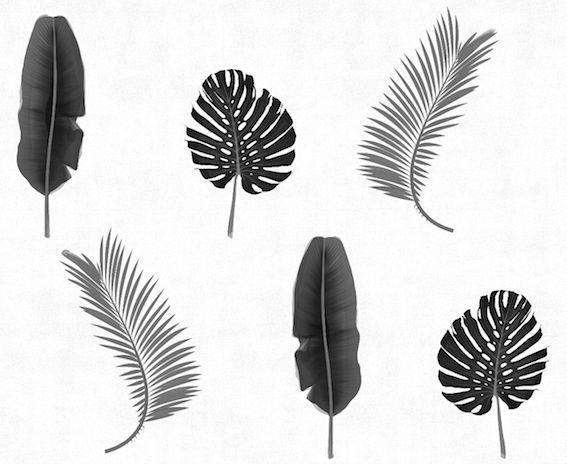 #rumruk #wallpaper #leaves #blackandwhite #shadow #repeat