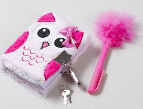 The Plush Owl Diary locks and comes with a fluffy pen ... - photo#50