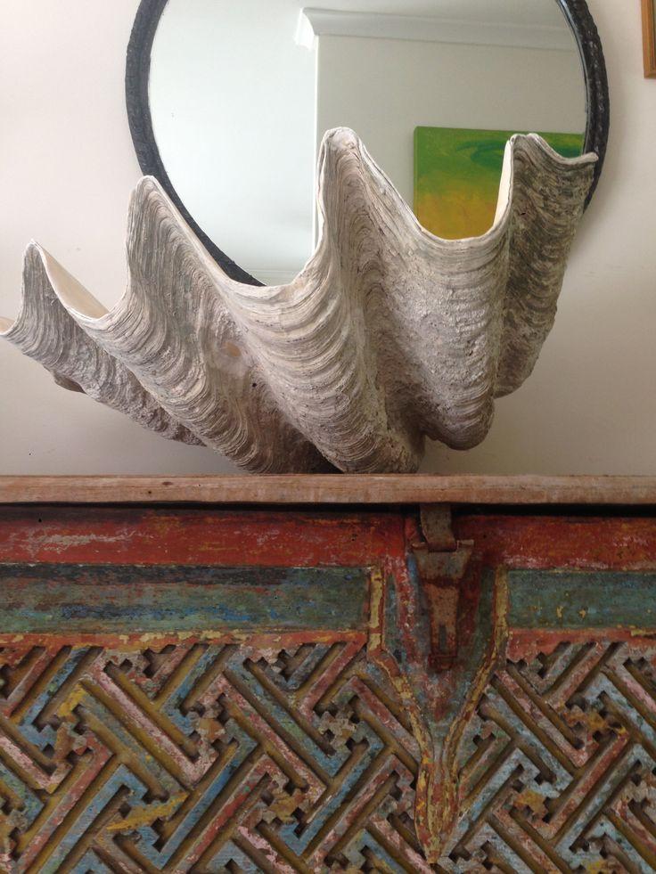 Giant antique clam shell 85 cm