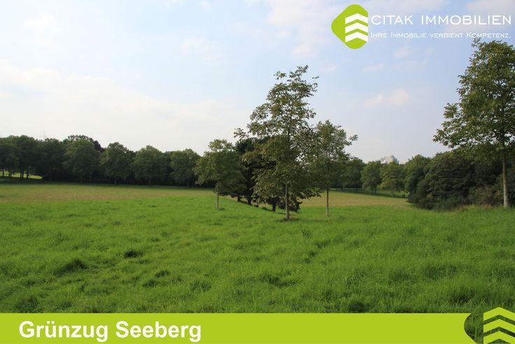 Köln-Seeberg-Grünzug