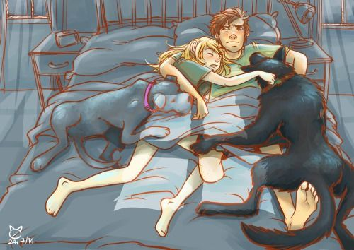 Hiccup and Astrid sleeping with their dogs Toothless the German Shepherd and Stormfly the Pitbull. Modern AU.