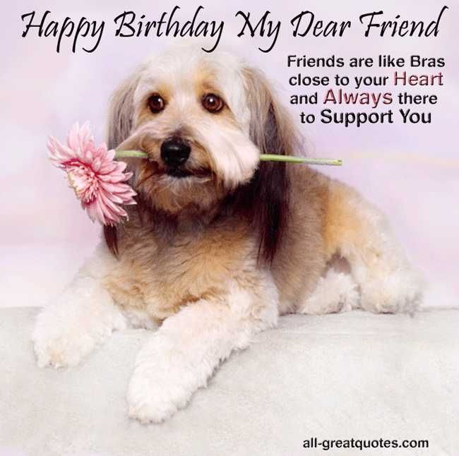 Image result for Happy Birthday dear friend dog cards