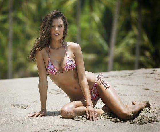 Cherokee Global Brands Announces the Debut of ále by Alessandra's Swimwear Collection