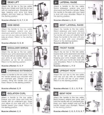 Exercise Program For Weider Home Gym Food Diet Chart