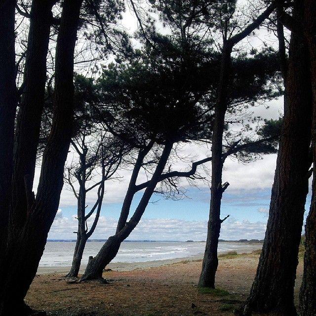 Carelmapu #MarBrava #RegiondelosLagos